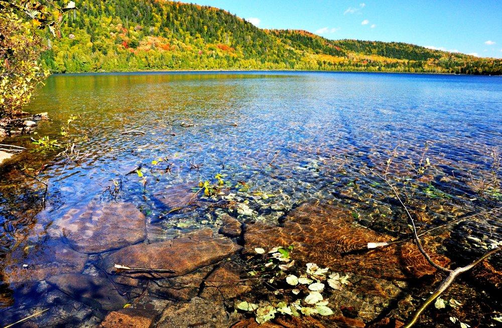 Arctic Char Pond Deboullie Maine.JPG