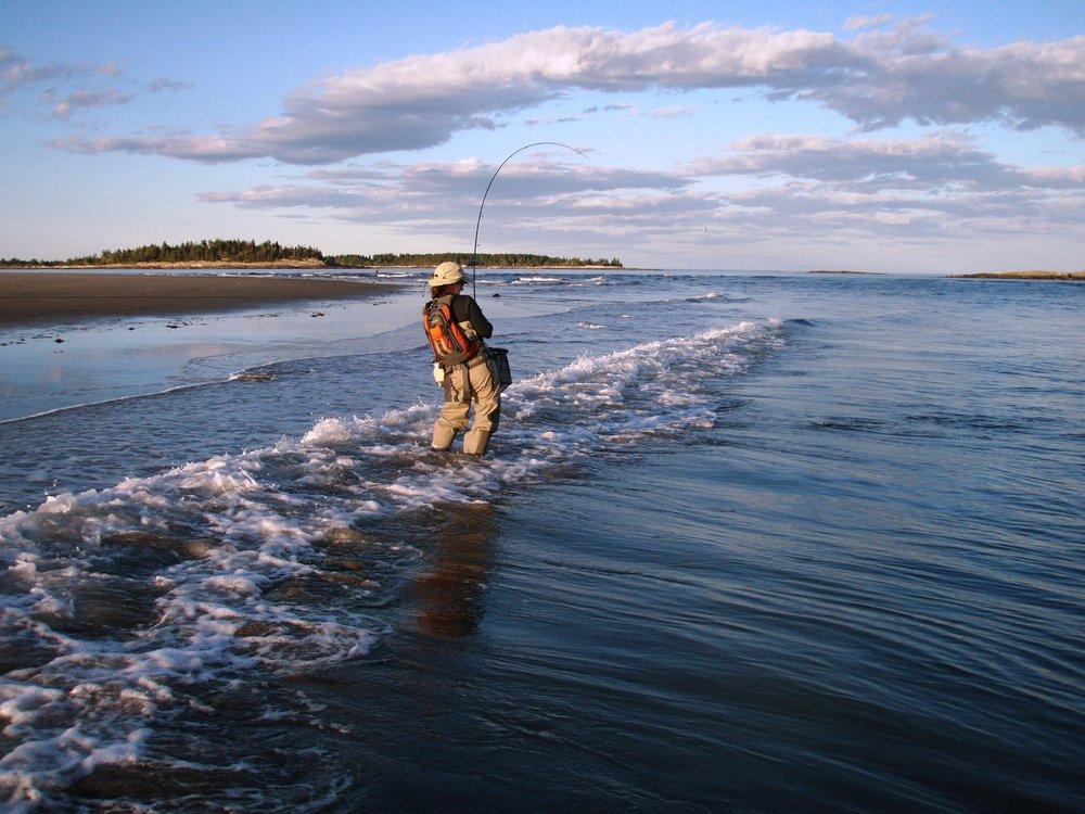 Diana Mallard Fly Fishing Popham Beach (Bob Mallard).jpg