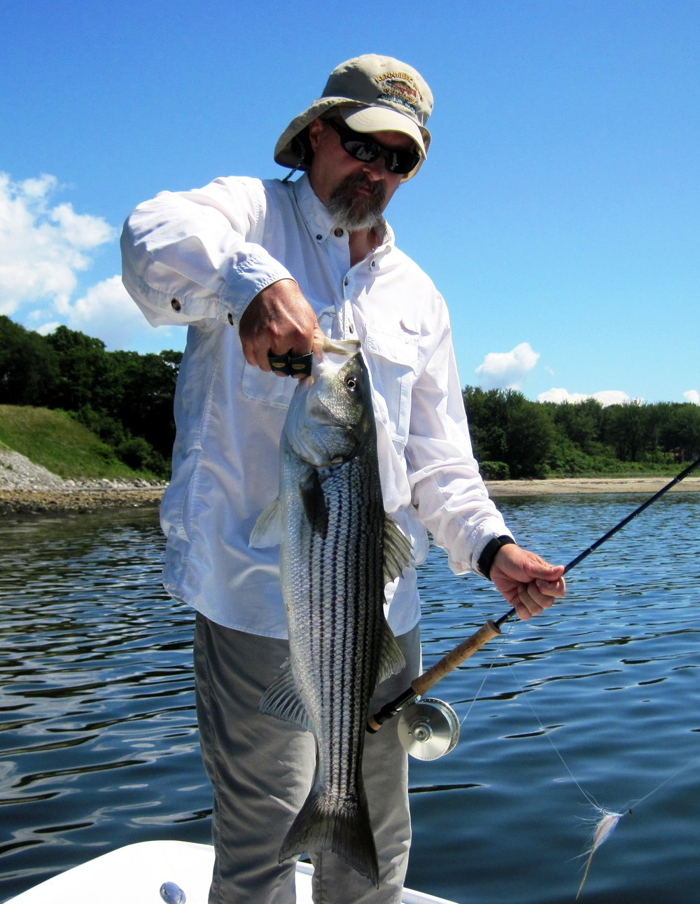 NCF Member Bob Mallard with Native Striped Bass (Casco Bay, ME) Eric Wallace, Coastal Fly Angler.JPG