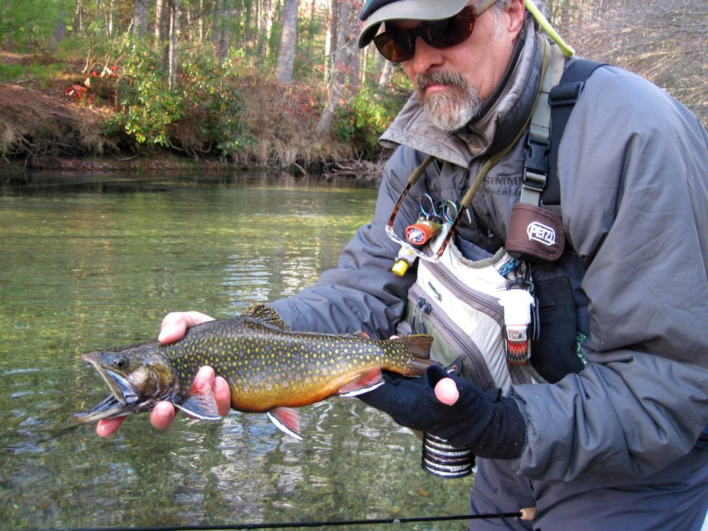 NFC Member Bob Mallard with Native Brook Trout (Swift River, MA) 2.JPG