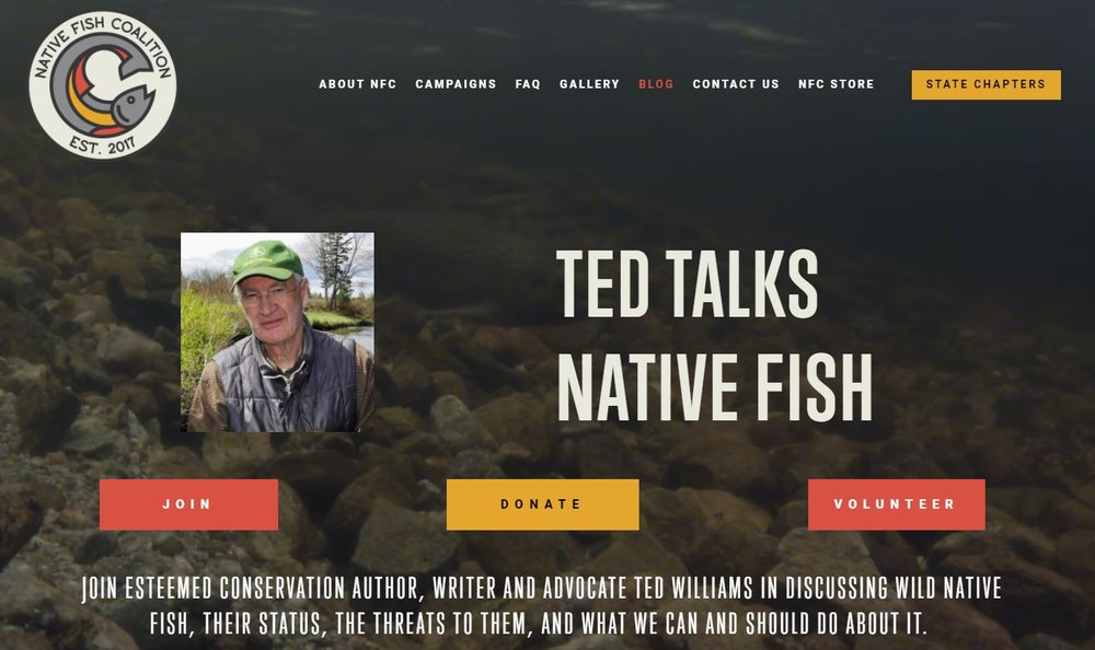 Ted's Blog Home Page