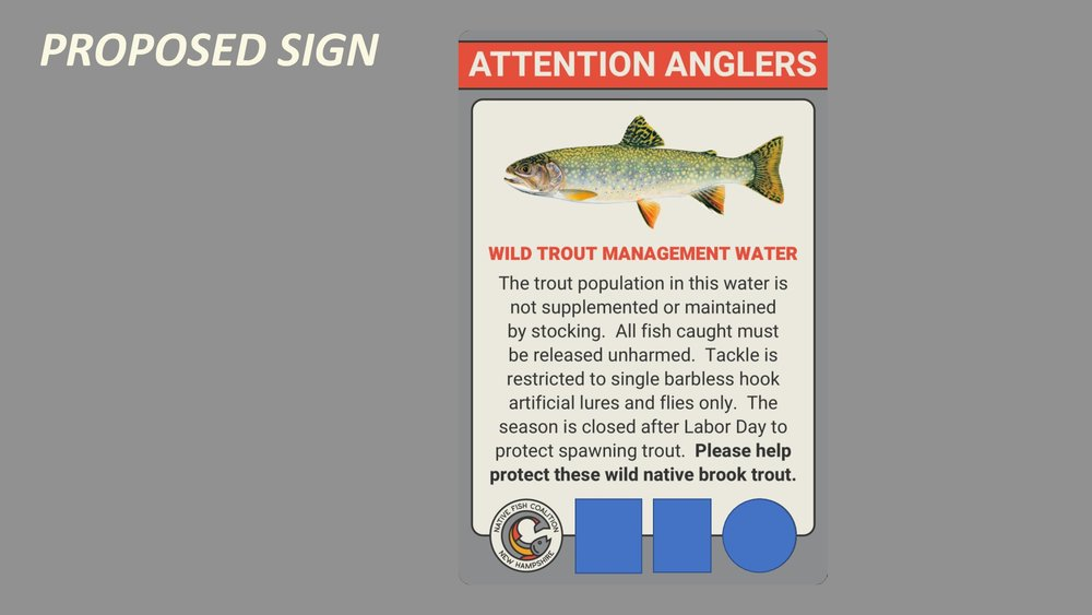 NH-Wild-Trout-Sign-Presentation-011.jpg