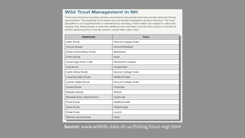 NH-Wild-Trout-Sign-Presentation-006-A.jpg