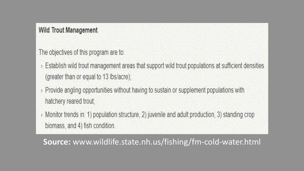 NH-Wild-Trout-Sign-Presentation-007-A.jpg