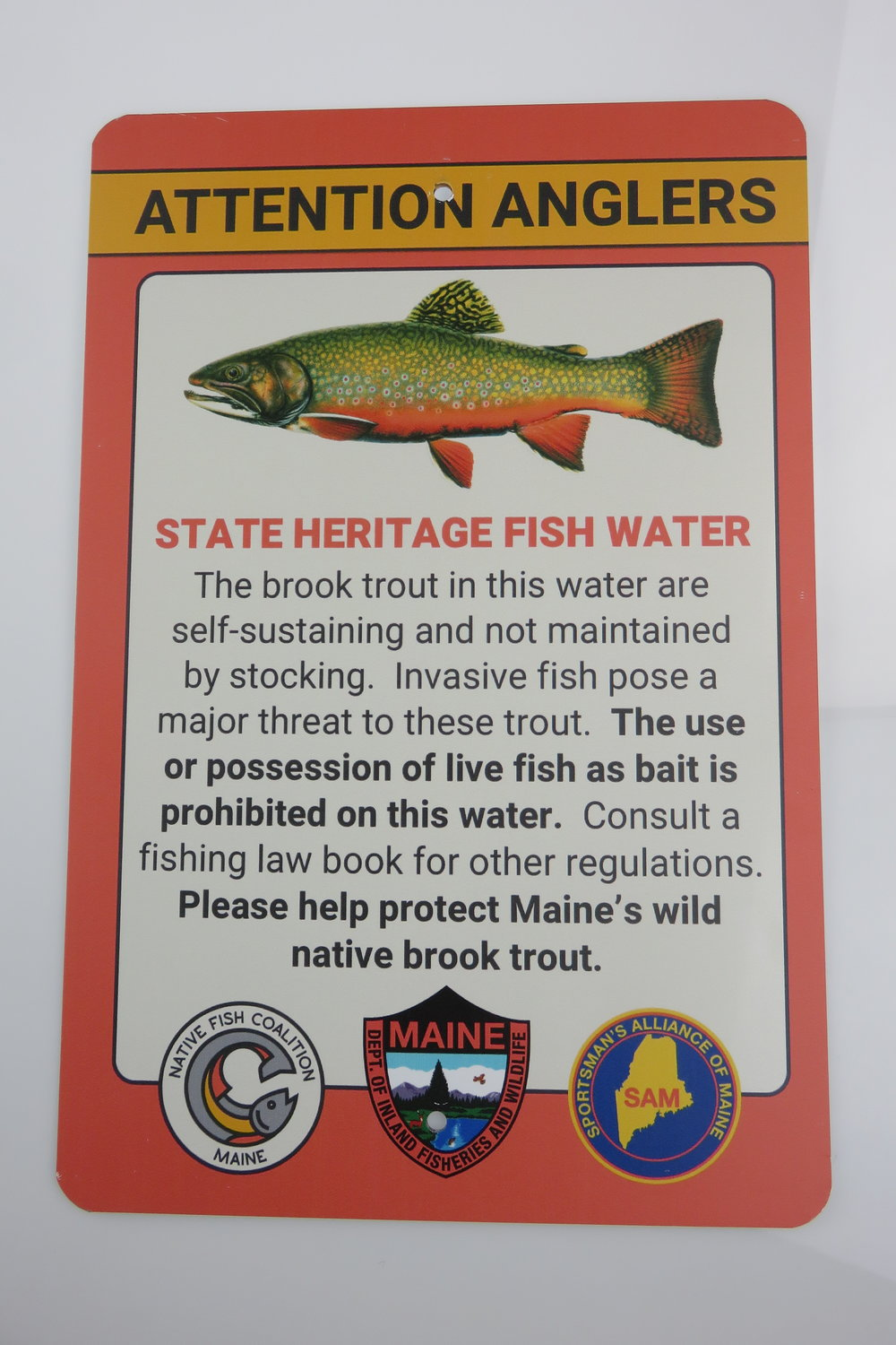Brook Trout Sign.JPG