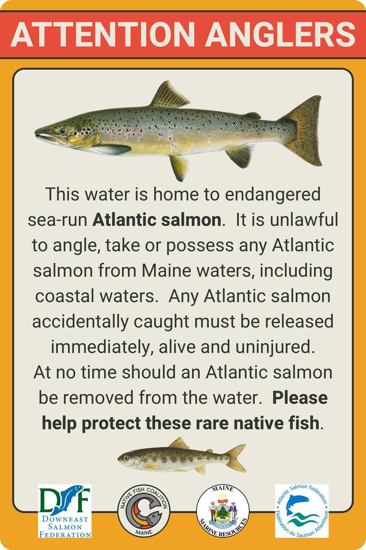 ME Atlantic Salmon Sign.jpg