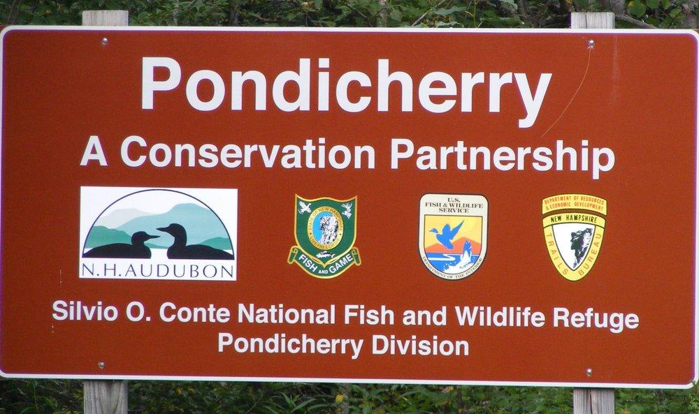 pondicherry-wildlife-refuge-in-jefferson-new-hampshire-usa-BR05Y5.jpg