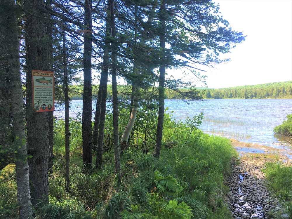 Little Allagash Pond.JPG