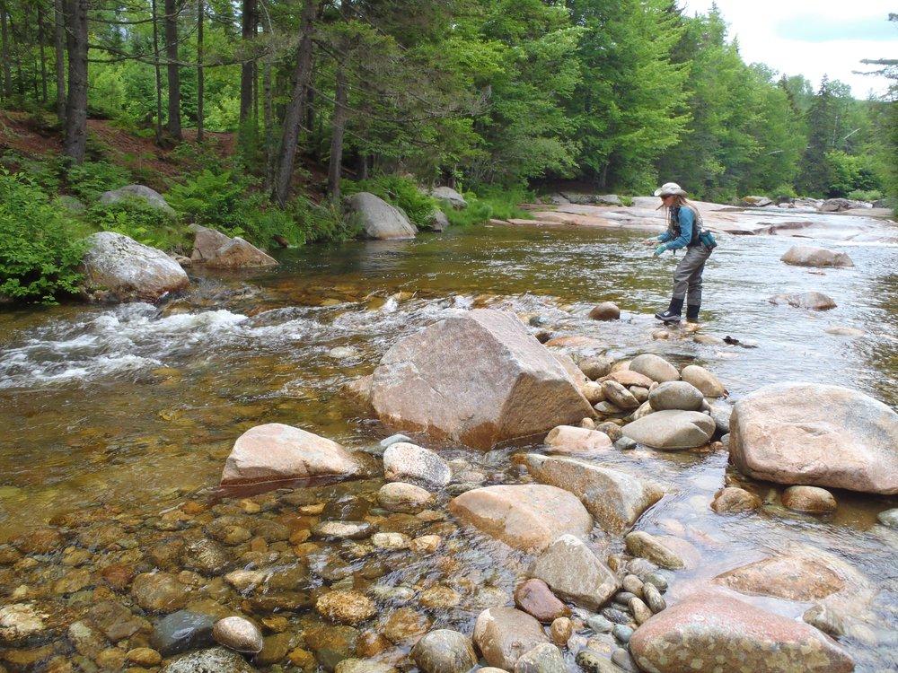 The upper Ammonoosuc River in Crawford's Purchase. (Bob Mallard)