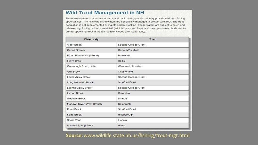 NH Trout Management Presentation 8.jpg