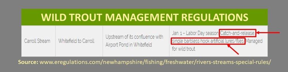 NH Trout Management Presentation 15.jpg
