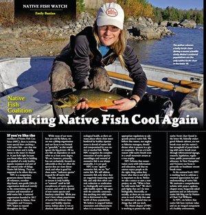 Blog — Native Fish Coalition