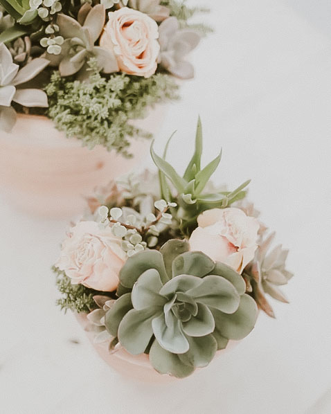 custom wedding succulents cactus star