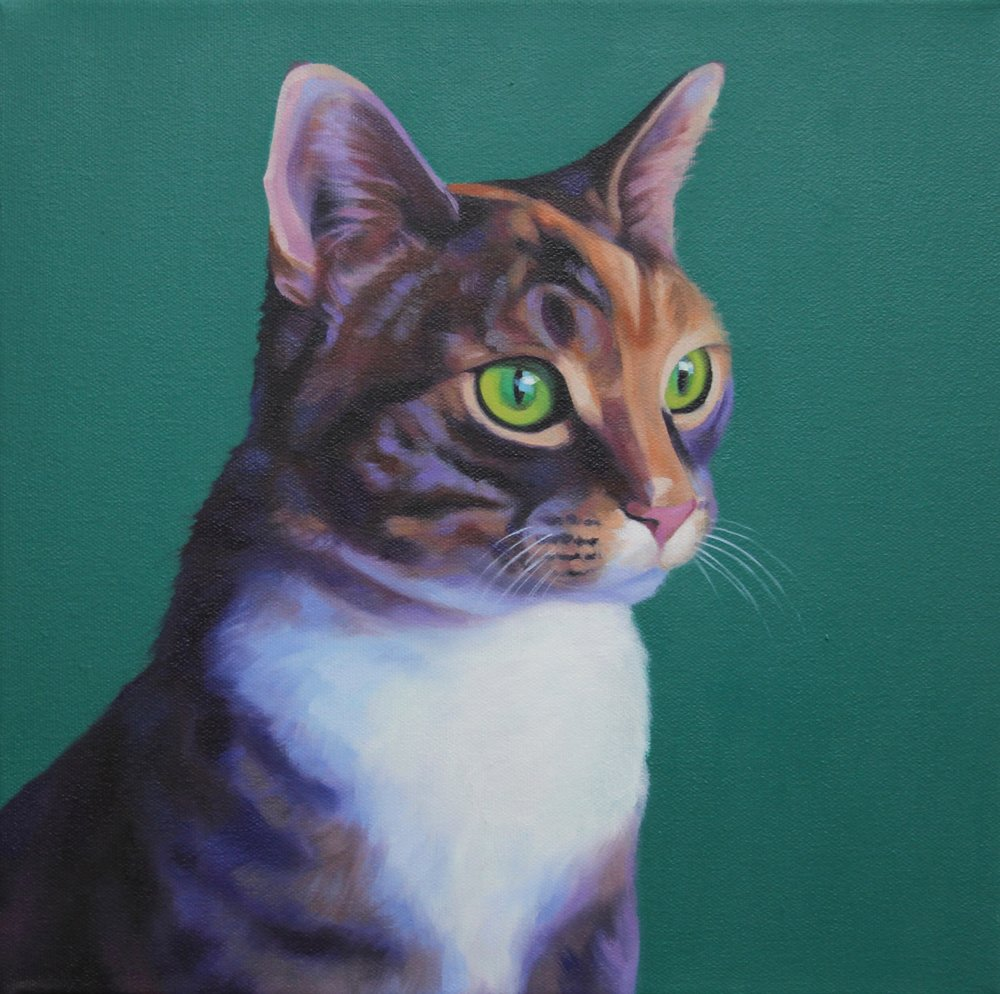 Oil paintings, Dog portraits, and pet portraits by Caroline Stanley in Calgary Alberta