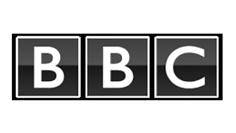BBC_motif.png