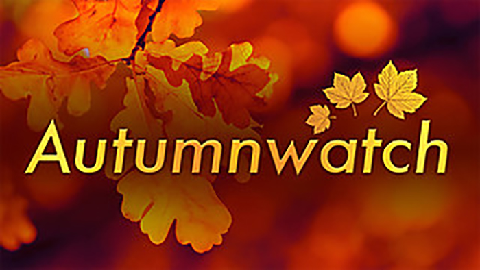 Autumnwatch.jpg