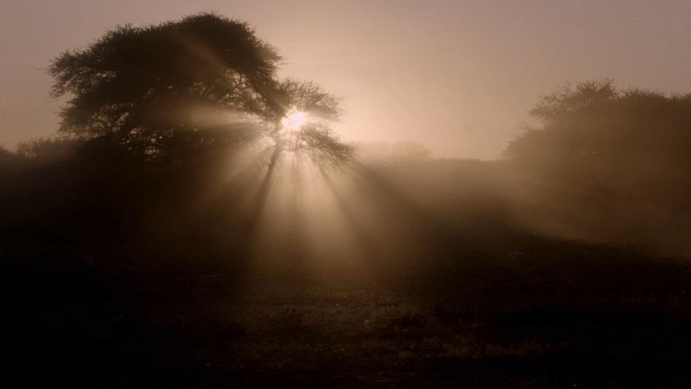 tribes sunrise.jpg