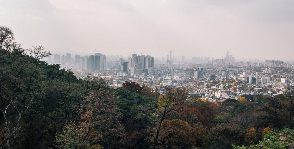 buildings-city-city-view-366107.jpg