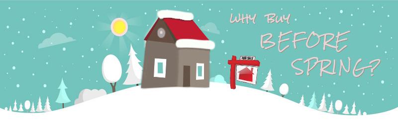winter house for sale.jpg