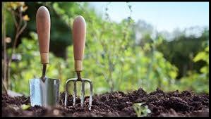 Accessible-Gardening-maintenance.jpg