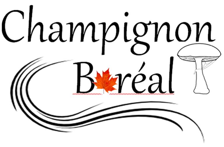 Champignon-boréal-1.png