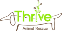 thrive logo.jpg.png