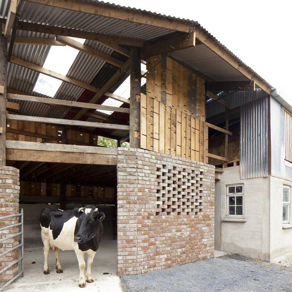 Cowshed__design_and_build_workshop_led_by_Cowshed_Collective._Image_by_Henrietta_Williams_(1).jpg