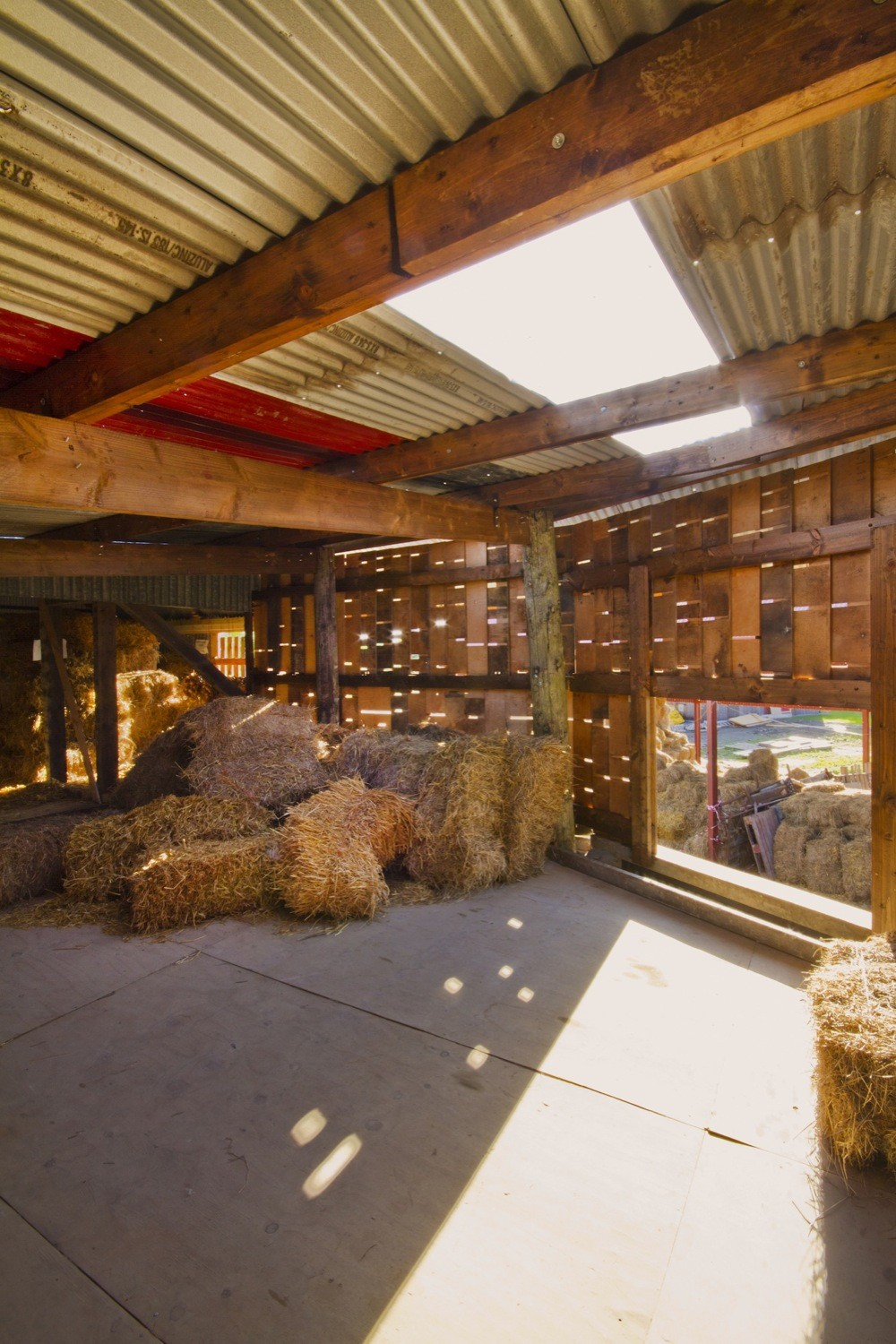 Cowshed__design_and_build_workshops_led_by_Cowshed_Collective._Image_by_Ste_Murray_(3).jpg