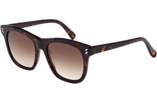 Sunglasses-320x207.fw.png