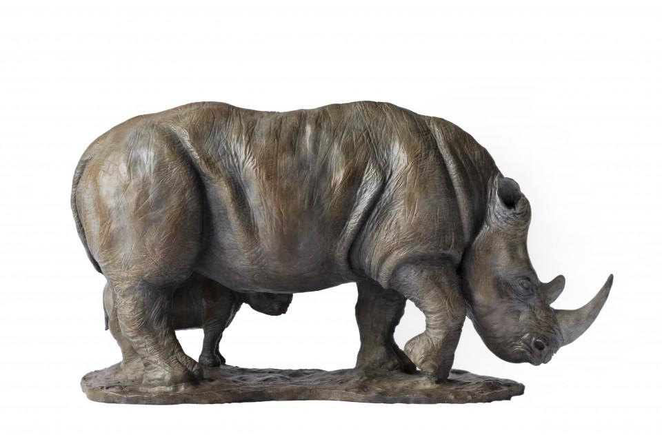 Rhino5-White-960x631.jpg