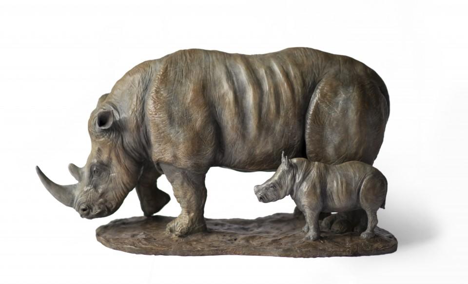 Rhino1-White-960x582.jpg
