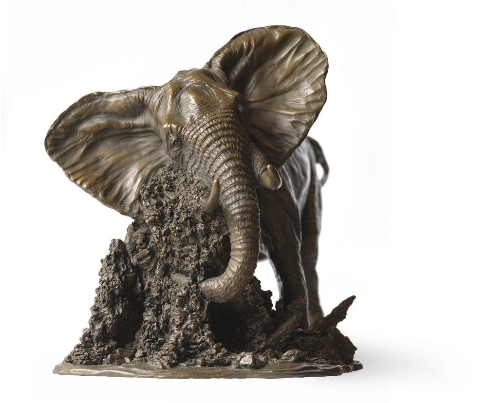 Elephant Bull1.jpg