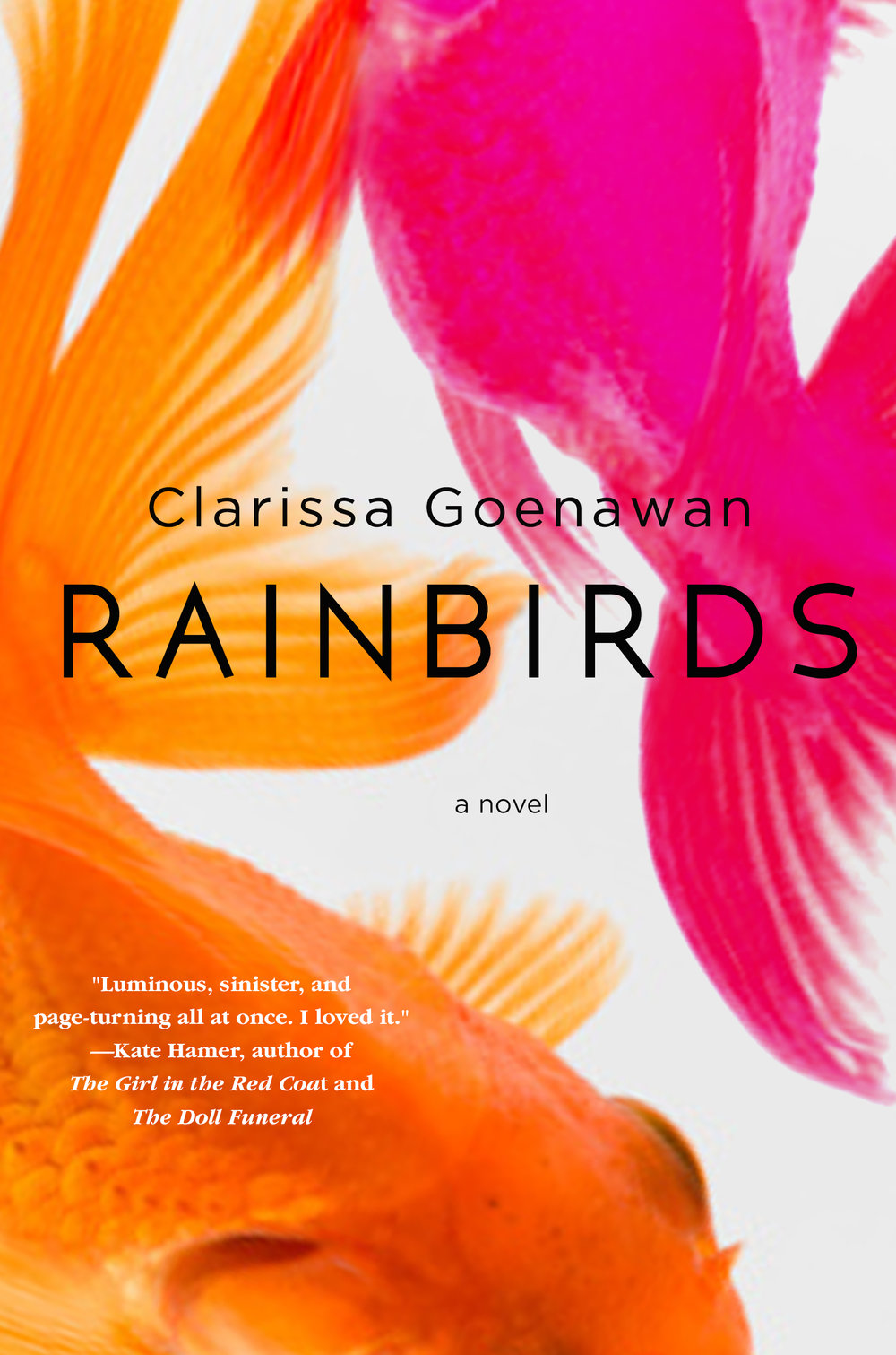 Rainbirds-final-cover-e-mail-res.jpg