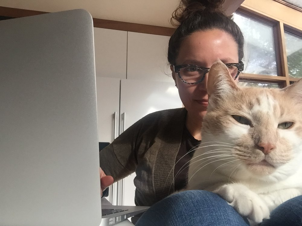 When I write, it is often in the morning with Ed the cat.