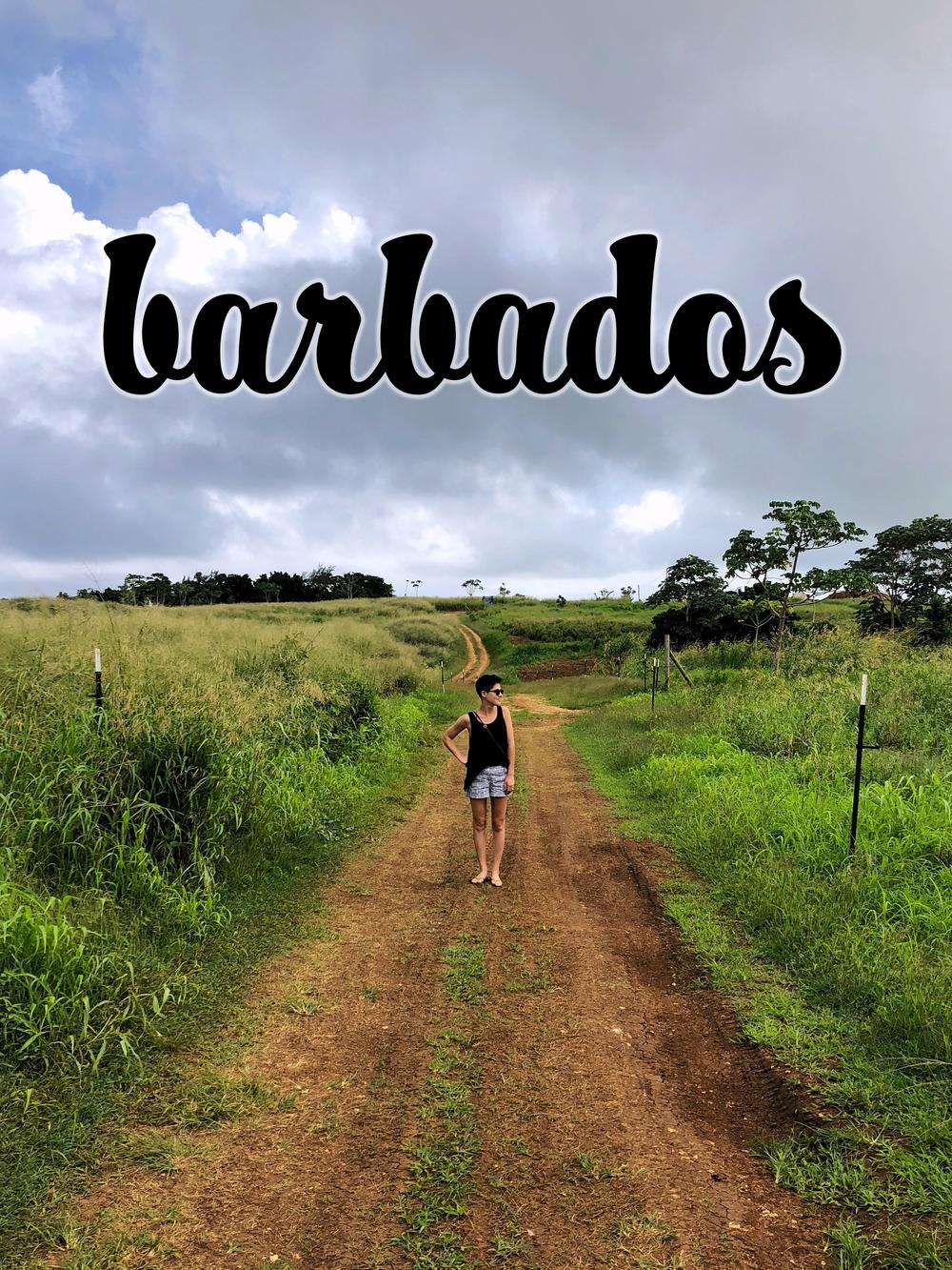 barbados farm.png