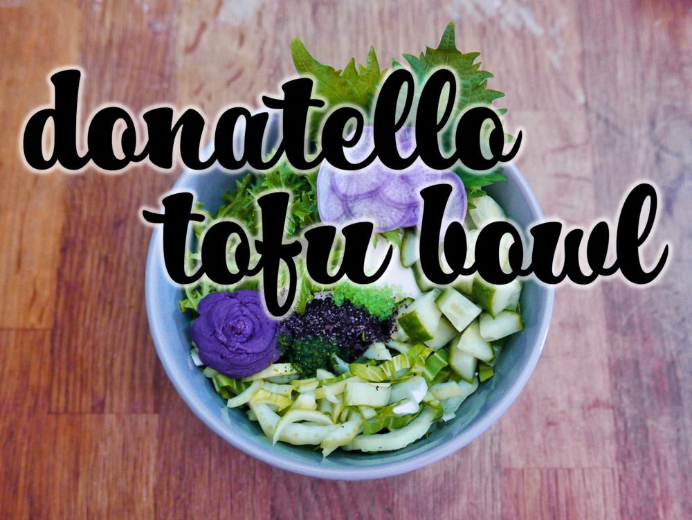 donatello tofu bowl topshot.png