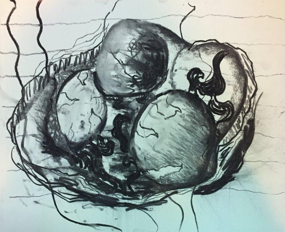 Phoenix Embryo