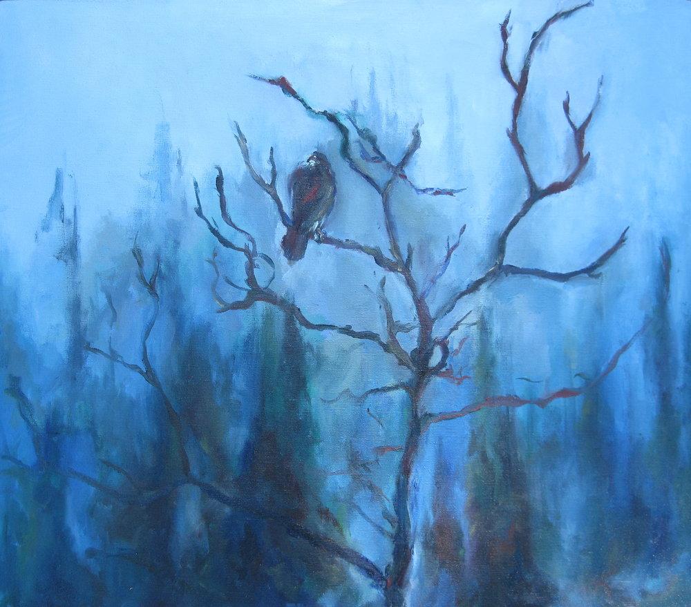 Woodland Hawk