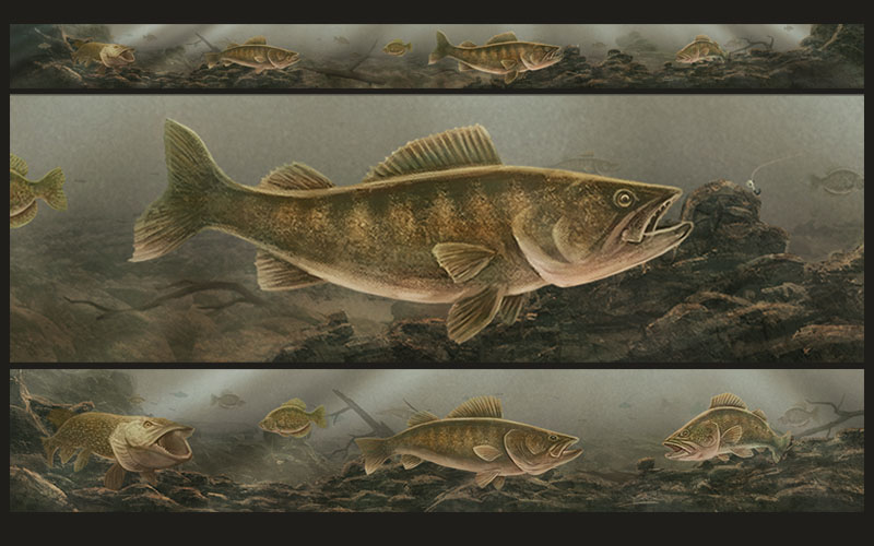 Underwater Walleye Scene