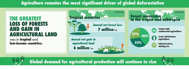 Deforestation FAO.png