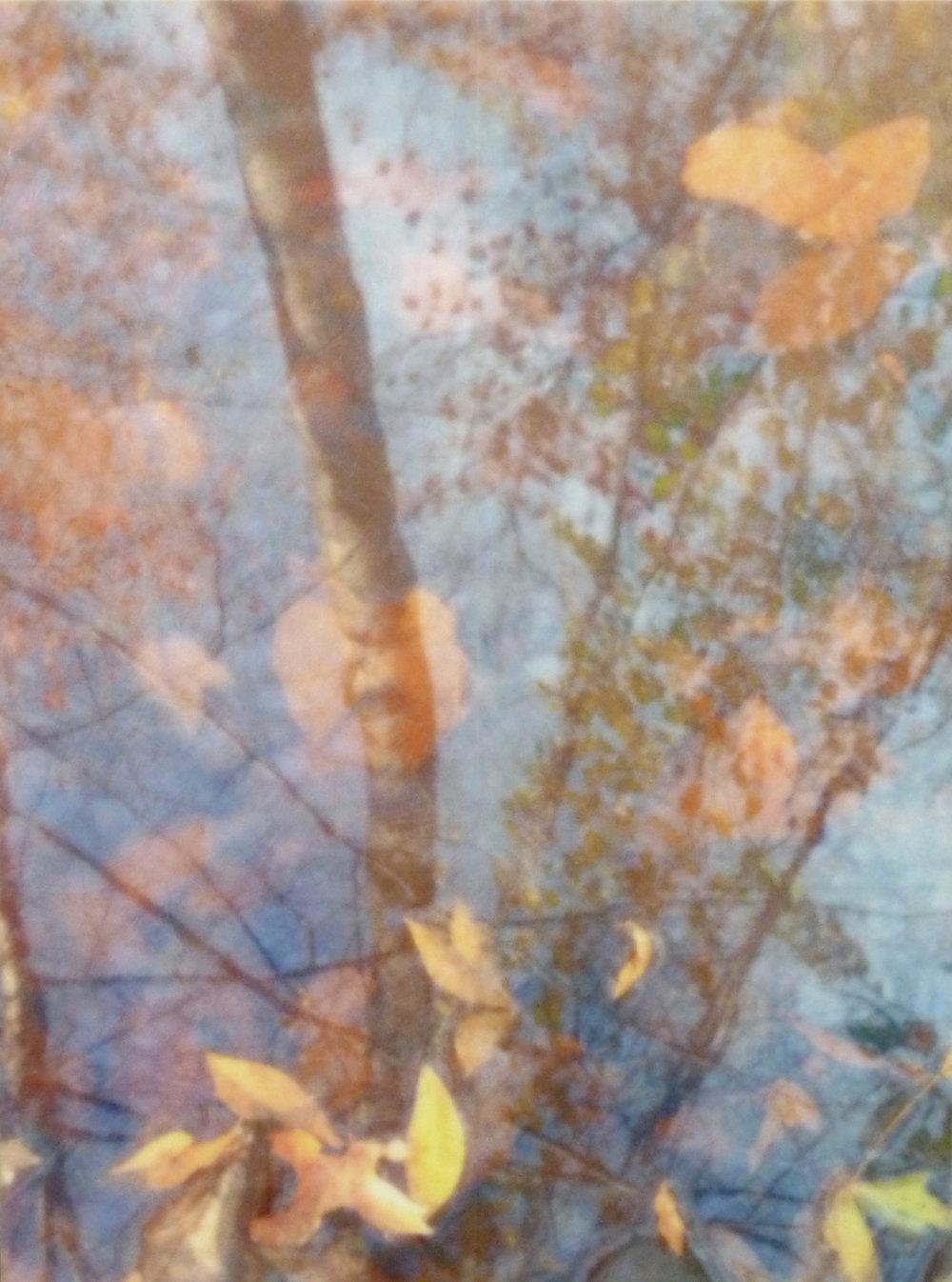 Water Mirror VI