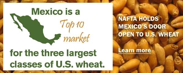 NAFTA-mexico.JPG