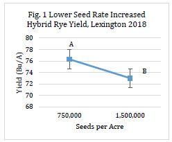 Hybrid Rye Fig 1.JPG