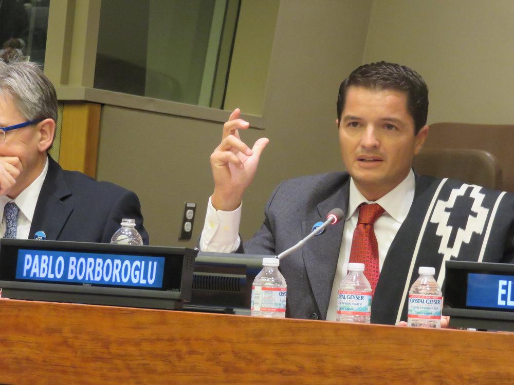2015 Exposicion en Naciones Unidas N York.JPG