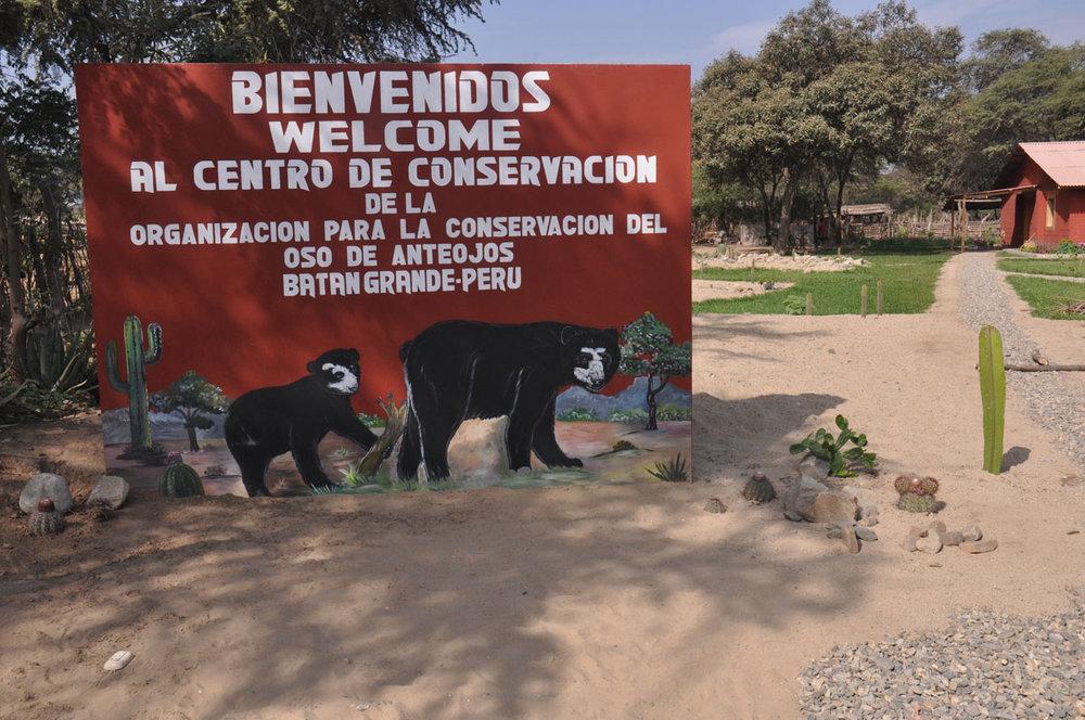 programs_beyond_bear_conservation_-_2.jpg