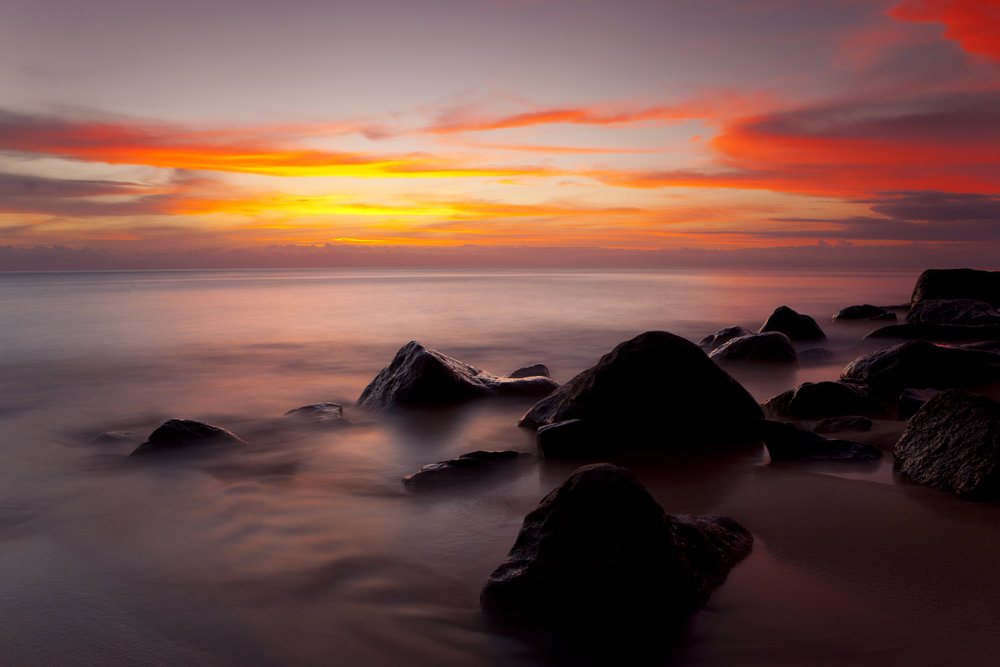 Court Whelan - _MG_5713.jpg