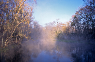 Silver river fog051_1.jpeg