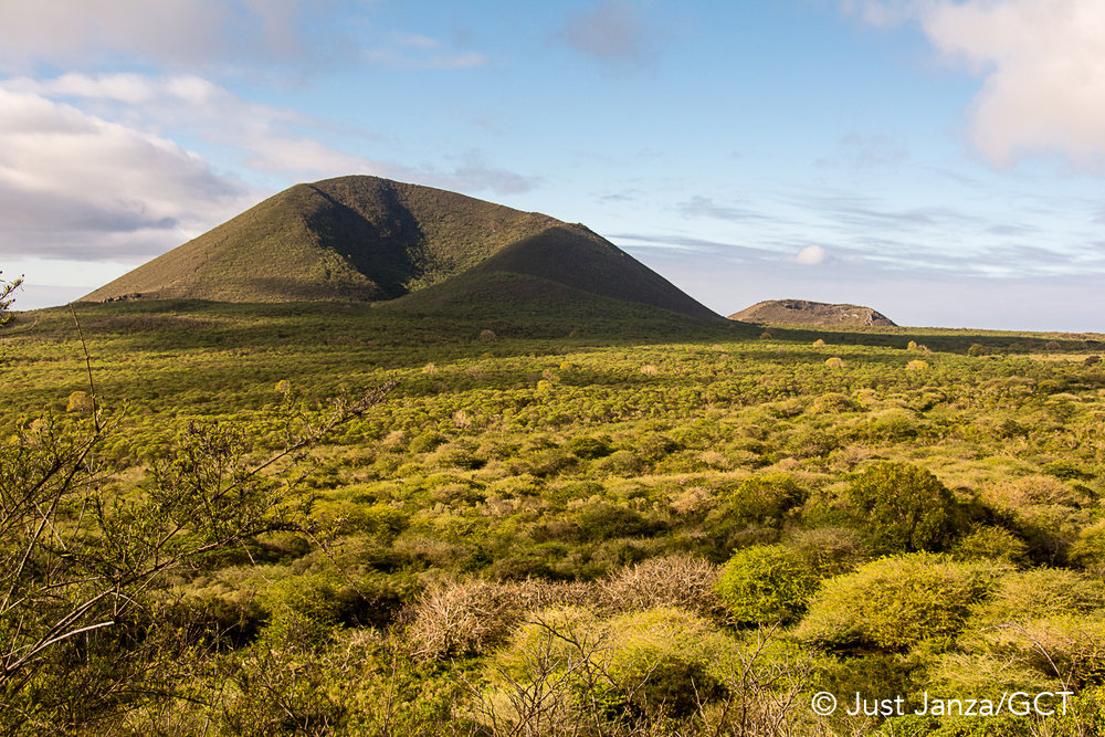 Galapagos Conservation Trust  - Floreana Highlands - Just Janza.jpg