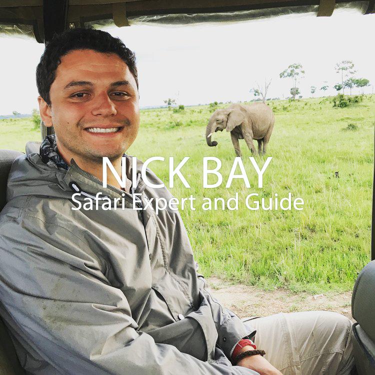 Nick+Bay+bio+photo.png