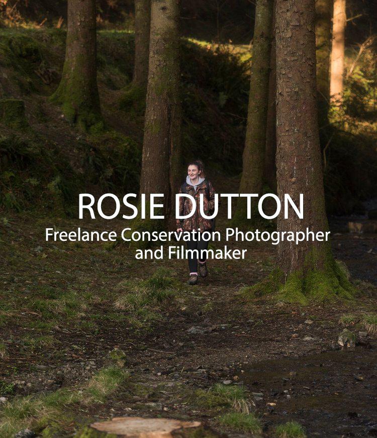 Rosie++Dutton+-+_DSC9600_preview.png